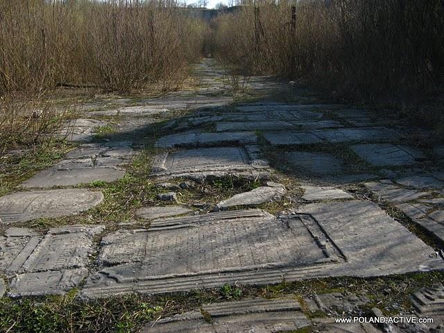 Turystyczne zwiedzanie krakowa auschwitz kopalnia soli w wieliczce